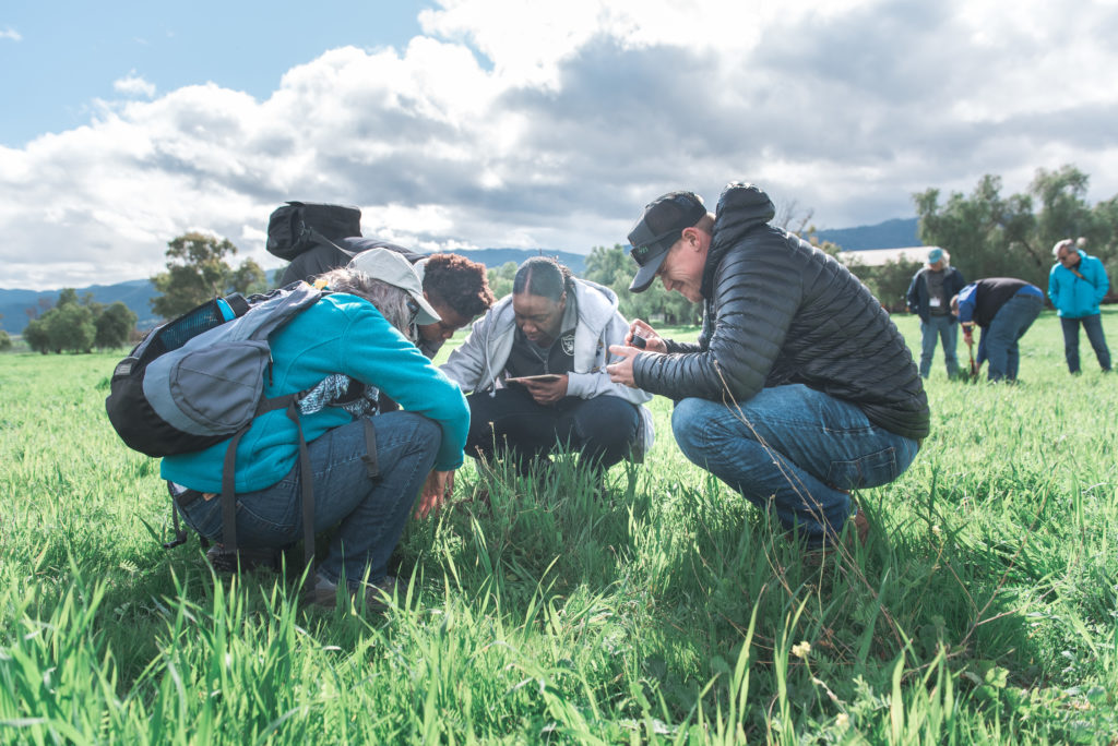 Cover Crop Workshop at Paicines Ranch