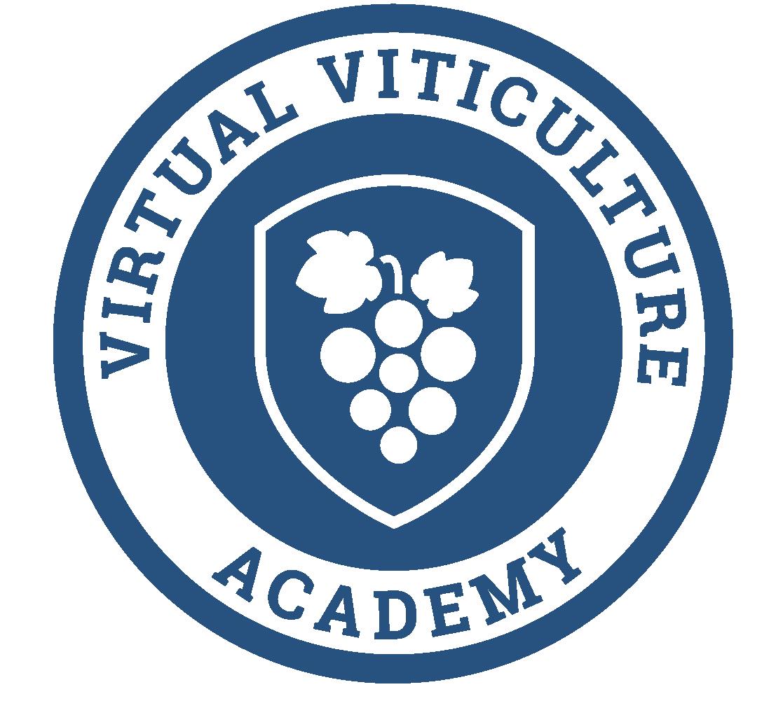 VVAcademy-logo-FINAL-color